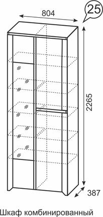 Шкаф комбинированный Твист 25